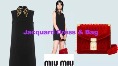 Jacquard dress and velvet bag from Miu Miu