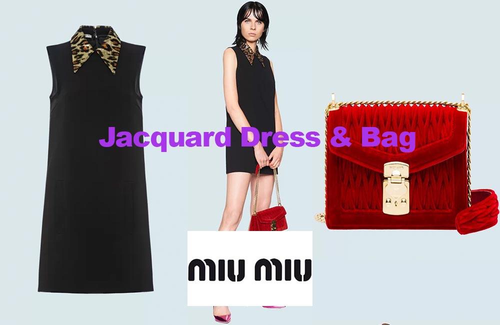 Jacquard dress and velvet bag from Miu Miu
